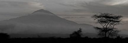 Tanzania Classic Dag 3 Kilimanjaro Track